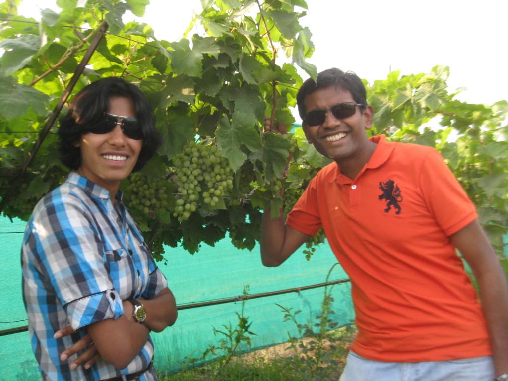 at the grape vineyard